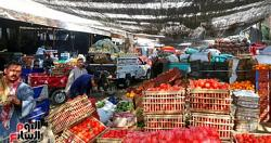 Prices of vegetables are the second day of Ramadan potato 1525 pounds per kilo
