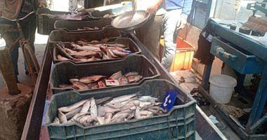 Learn about fish prices in the Obour market today Friday 2622021